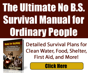 NO B.S. SURVIVAL EDUCATION OF SURVIVAL FITNESS