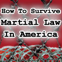 How to prepare for martial law coming to america in the not too distant future