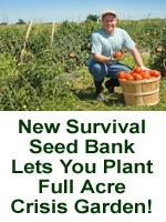 Plant a crisis garden...